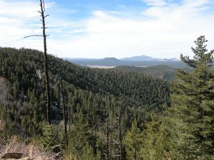 View from mt. elden